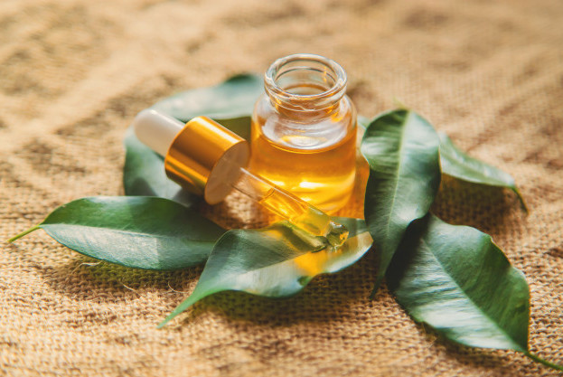 Sử dụng dầu cây trà điều trị mụt cóc