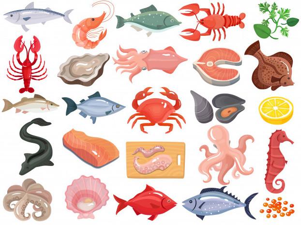 Hình ảnh hải sản