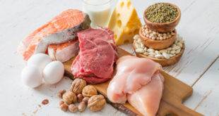Protein giúp bạn giảm cân như thế nào