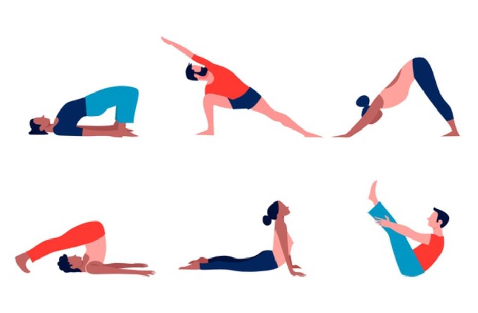 Tập thể dục giúp cơ linh hoạt giảm đau nhức cơ