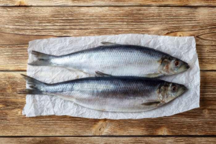 Cá chích cung cấp 216UI Vitamin D