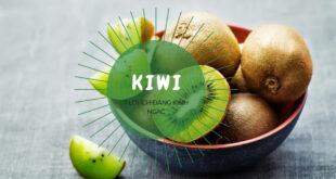 Lợi ích Kiwi bạn nên biết
