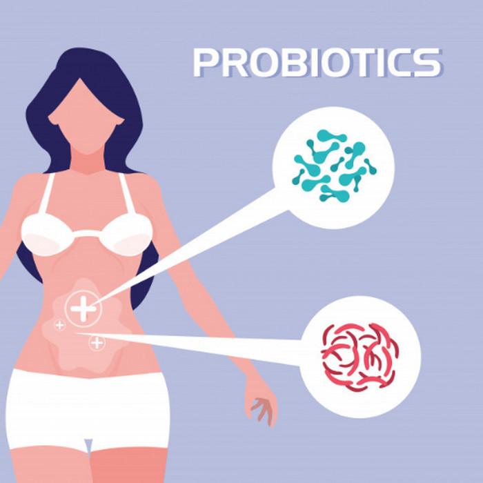 Probiotic giúp loại bỏ mỡ nội tạng