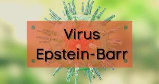 Virus Epstein-Barr: Những điều cần biết về loại vi rút này