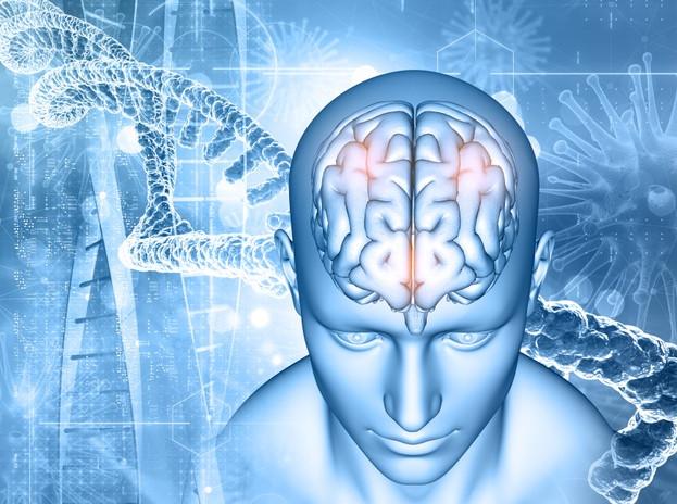 Dầu MCT giúp cải thiện chức năng não